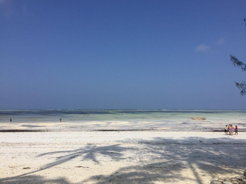 Zanzibar 2018